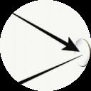 profile-pic